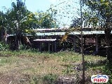 Photo Agricultural Lot for sale in Morong