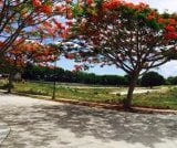 Photo Lot For Sale in Calatagan for ₱ 5,903,675 with...