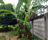 Photo Land and Farm For Sale in Cagayan De Oro City...