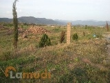 Photo Plot For Sale in Chak Shahzad, Islamabad -...