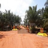 Photo Bukit Cantik Agriculture Land for Sales