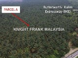Photo Oil Palm Estate in Penanti near Butterworth,...
