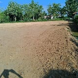 Photo Tanah untuk disewa. Land for rent