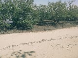 Photo 1,000 sq. m. Beach Lot For Sale in Igcawayan,...