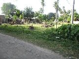 Photo For sale residential lot in digos city