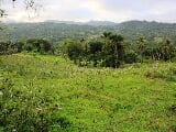 Photo Farm Land for Sale in Brgy Paril Cebu City