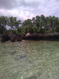 Photo FOR SALE: Beach / Resort - Siquijor