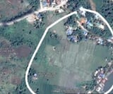 Photo Land and Farm For Sale in Pangascasan for ₱...