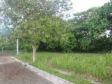 Photo Land for sale in Consolacion, Cebu