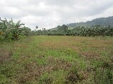 Photo Agricultural lot for sale
