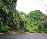 Photo Lot For Sale in San Antonio for ₱ 3,100,000...