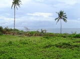 Photo Beautiful Seaview front lot for sale