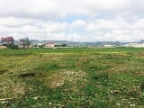 Photo Agricultural Plot For Sale In Tuguegarao City,...