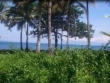 Photo Land for sale in Santa Cruz, Magsaysay (Linugos)