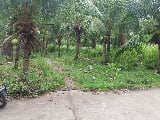 Photo Lot for sale in dauin negros oriental