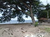 Photo Beach front lot for sale in bacong