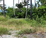 Photo Land and Farm For Sale in Davao City for ₱...