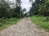 Photo Farm Lot for Sale in Panungyan Mendez Cavite