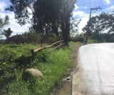 Photo Commercial For Sale in Baguio City for ₱...