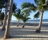 Photo Lot For Sale in Bantayan for ₱ 51,595,000 with...