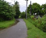 Photo Land and Farm For Sale in Alaminos City for ₱...