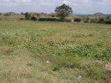 Photo 2.2 hectare vacant lot for sale in Bulacan