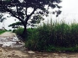 Photo 1500 sqm lot for sale in general trias cavite