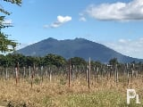 Photo For sale: 239,981 sqm. Vacant Lot in North...