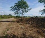 Photo Industrial For Sale in Canlubang for ₱...