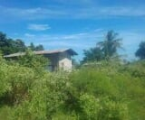 Photo Lot For Sale in Ubay for ₱ 2,100,000 with web...