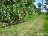 Photo 631 Sqm Residential Land/lot For Sale Bayugan City