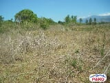 Photo Agricultural Lot for sale in Iba