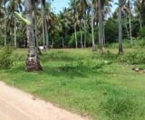 Photo Lot For Sale in Samal Island Garden City for ₱...