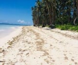 Photo Lot For Sale in Siargao Island for ₱ 42,304,000...