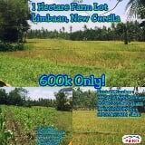 Photo Agricultural Lot for sale in Other Cities