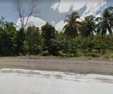 Photo Land and Farm For Sale in Mawab for ₱ 2,000,000...