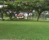 Photo Land and Farm For Sale in Quezon for ₱...