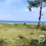Photo Lot For Sale At INFANTA Quezon