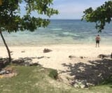 Photo Lot For Sale in Panglao for ₱ 28,760,000 with...