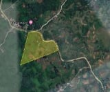Photo Land and Farm For Sale in Palompon for ₱...