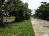 Photo Agricultural Lot for sale in Naga