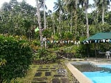 Photo FARM LOTfor sale with resort & hundreds fruit...