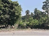 Photo 75 Hectares Land For Sale At Mamburao,...