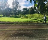 Photo Land and Farm For Sale in Alfonso (Cavite) for...