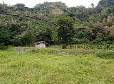 Photo 2.2 hectares farm lot, camp 1, tuba, benguet