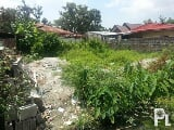 Photo Residential lot or land for sale in plaridel...