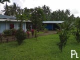Photo 2 House & Lot in Bicol, Labo C. N. 2 hect