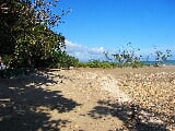 Photo Land for sale in Malcampo, Roxas - 1707-