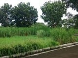 Photo Vacant Lot (T-223) for Sale Cyberville...