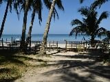 Photo 903 Sqm Beach Front Lot - Alimanguhan, San Vicente